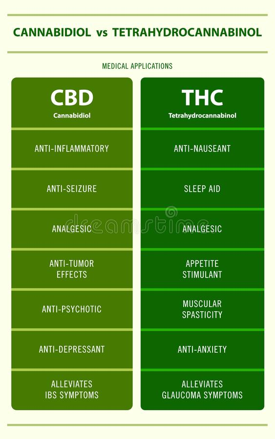 CBD vs THC medical applications vertical infographic royalty free stock image