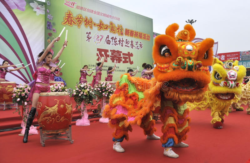 Download CChinese New Year Festivities Show Editorial Stock Photo - Image of lion, traditions: 17981288