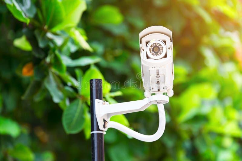 cctv安全监控相机监视在公园