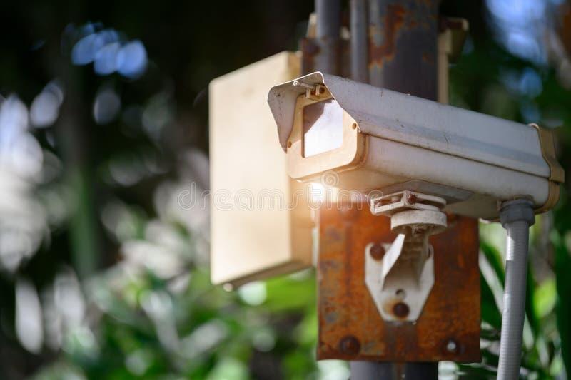 CCTV数字记录器照相机在公园 技术和安全电子 预防犯罪和警察在大都会 库存图片