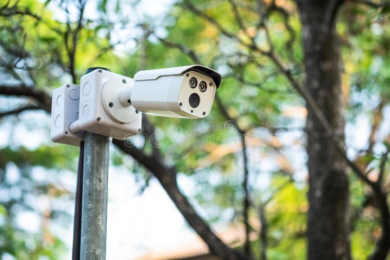 Cctv camera on the pole in the park royalty free stock photo
