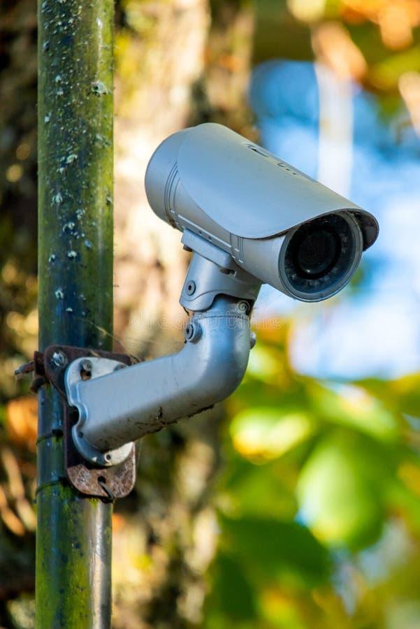 CCTV di forma rotonda nel parco della citt? fotografia stock libera da diritti
