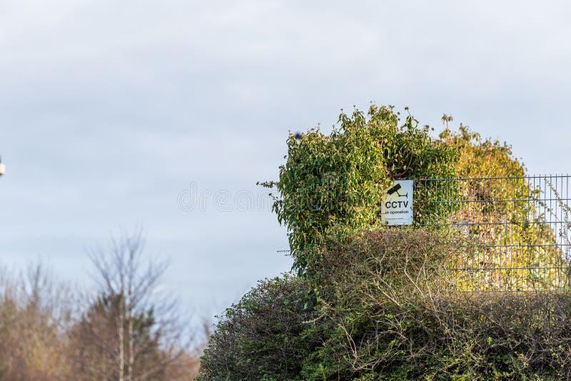 CCTV genérico no sinal de aviso da operação na cerca dos arbustos imagem de stock