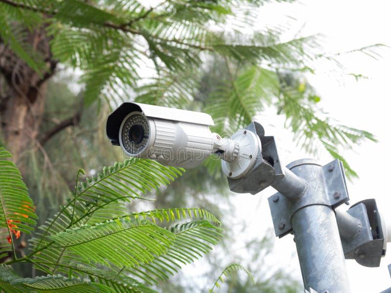 CCTV kamera bezpieczeństwa instalująca w wiosce dla pracownika ochrony monitorowanie i inwigilacja dla pozwalać złych rzeczy zdar obrazy stock