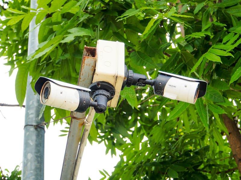 Cctv kamera instalująca w ogródzie zdjęcie royalty free