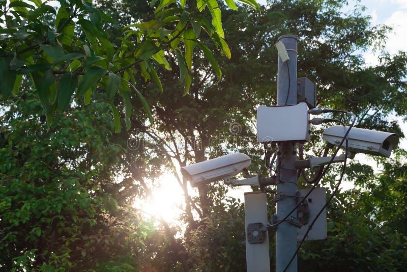 CCTV kamery wśrodku parka zdjęcie stock