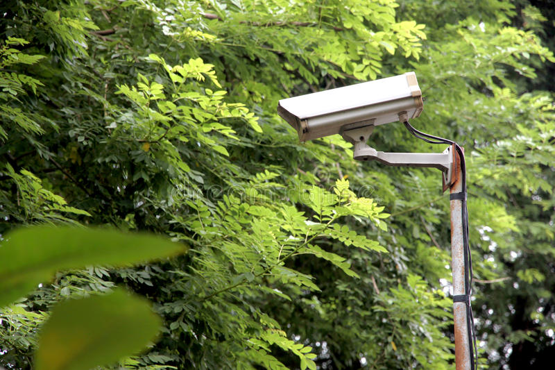 CCTV security camera in the park. CCTV camera in the park in a security system royalty free stock photo