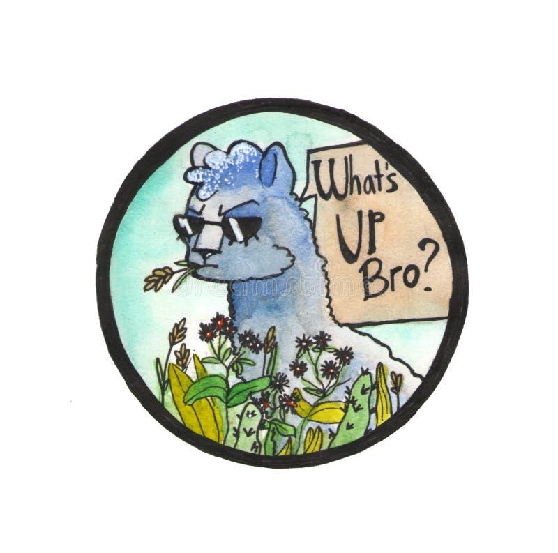 Ce qui est, Bro dit le lama avec des lunettes de soleil Alpaga drôle de bande dessinée de croquis d'aquarelle illustration libre de droits
