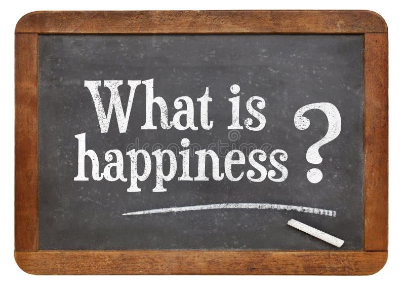 Ce qui est question de bonheur photographie stock libre de droits