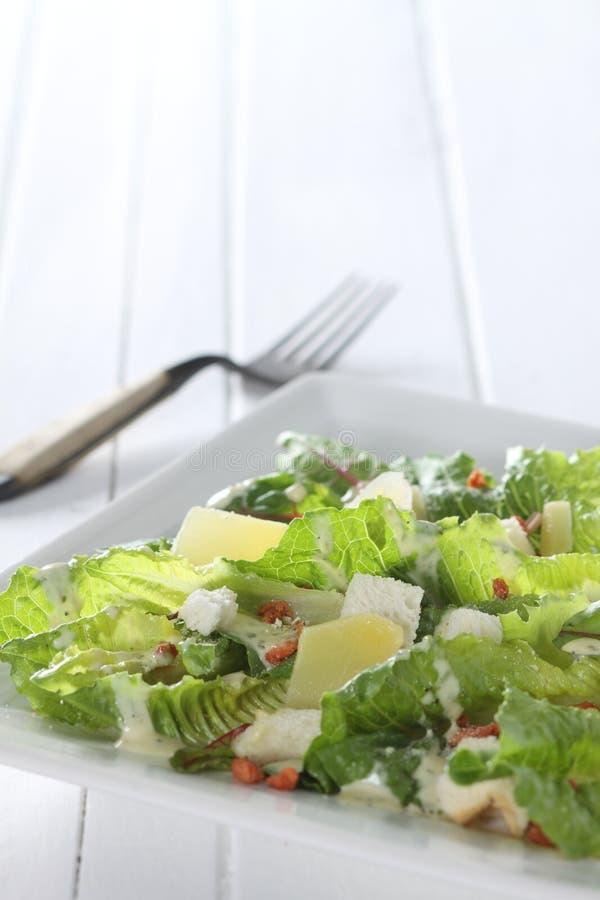 Free Ceasar Salad Stock Image - 7841971