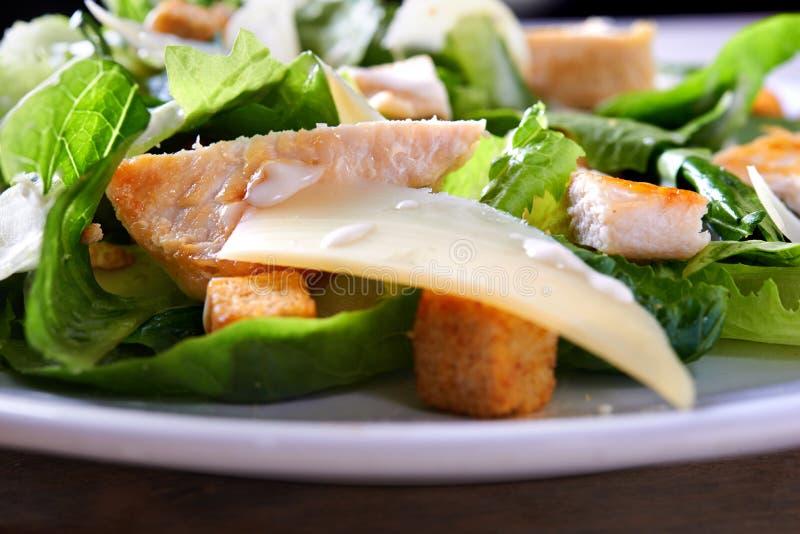 Ceaser салата стоковые изображения