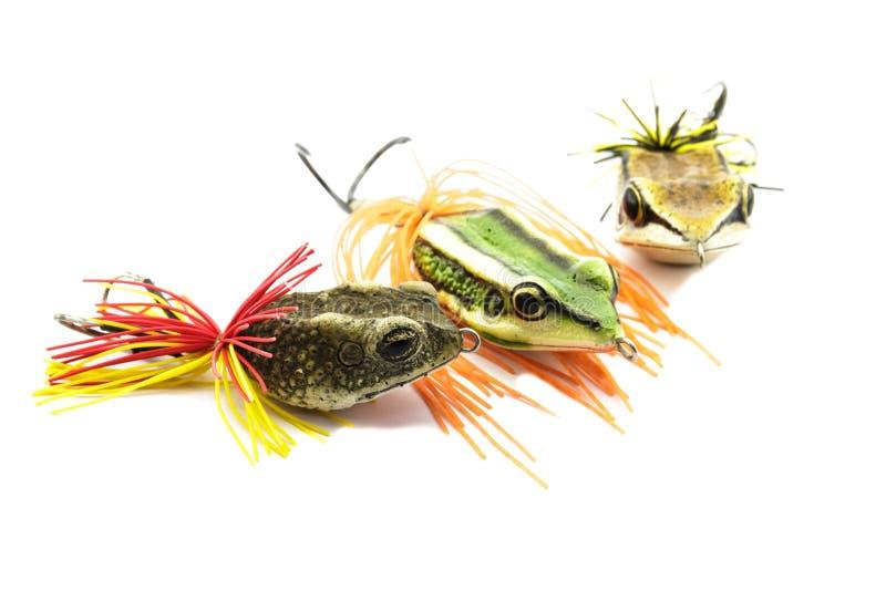 Cebo de los pescados imagen de archivo libre de regalías