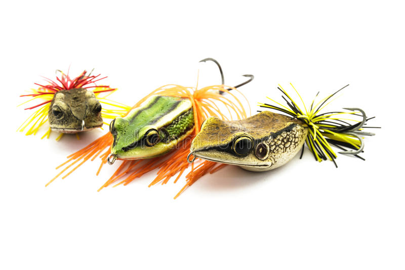 Cebo de los pescados imagenes de archivo