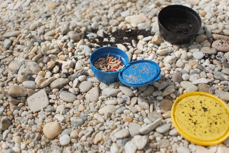 Cebo de pesca de los gusanos imágenes de archivo libres de regalías