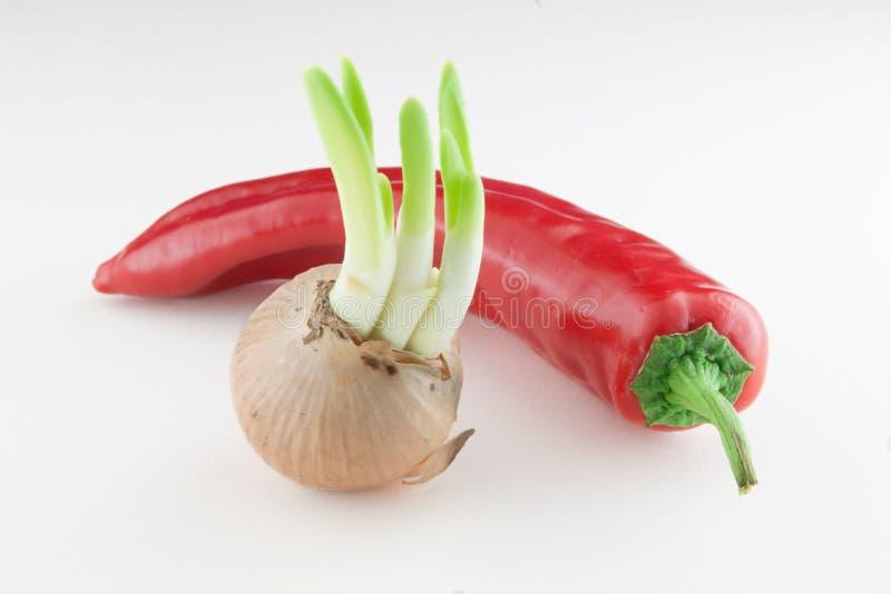 Cebola emergente e pimenta vermelha foto de stock royalty free