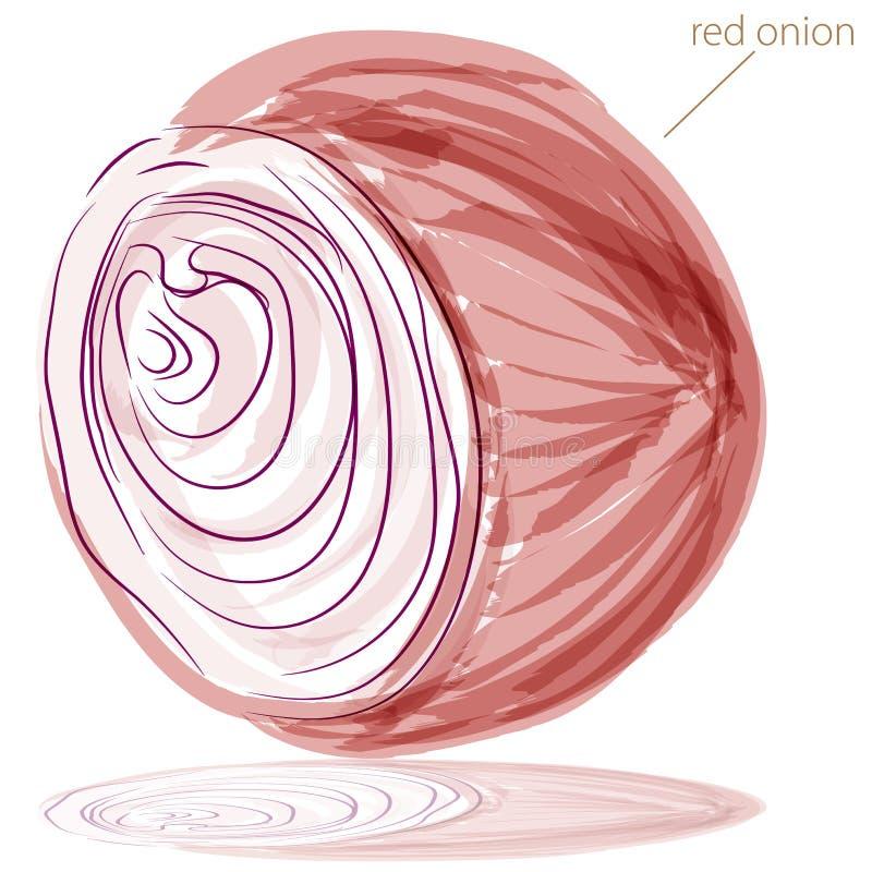 Cebola vermelha ilustração stock