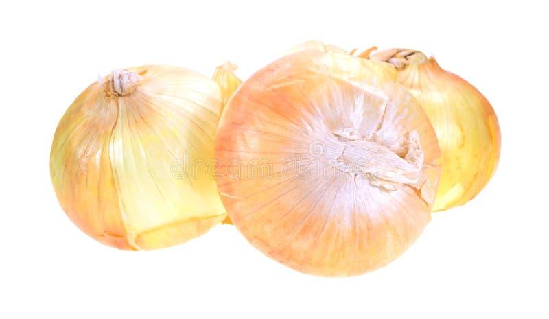 Cebolas doces em um fundo branco imagem de stock royalty free