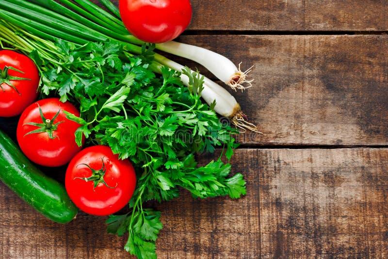 Cebolas dos tomates, do pepino, do coentro e da mola fotos de stock royalty free