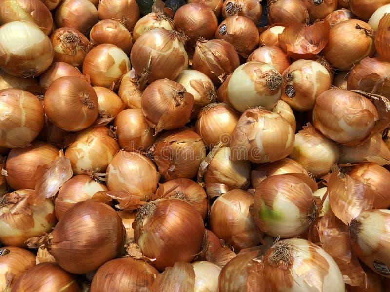 Cebolas em um mercado que está sendo vendido imagem de stock royalty free