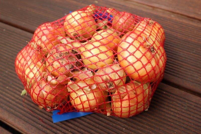 Cebolas embaladas foto de stock royalty free