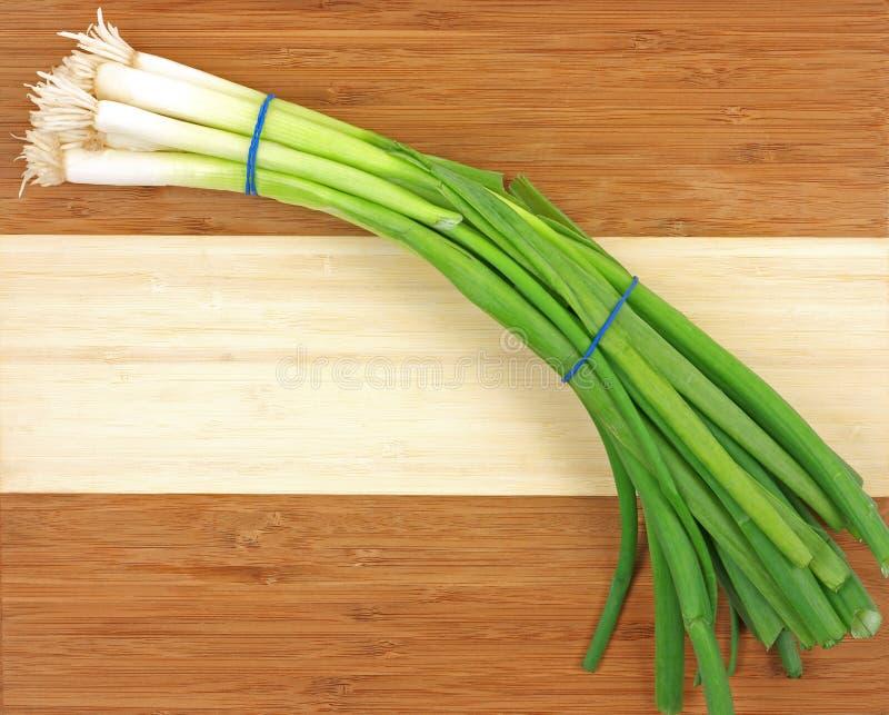 Cebolas verdes novas foto de stock