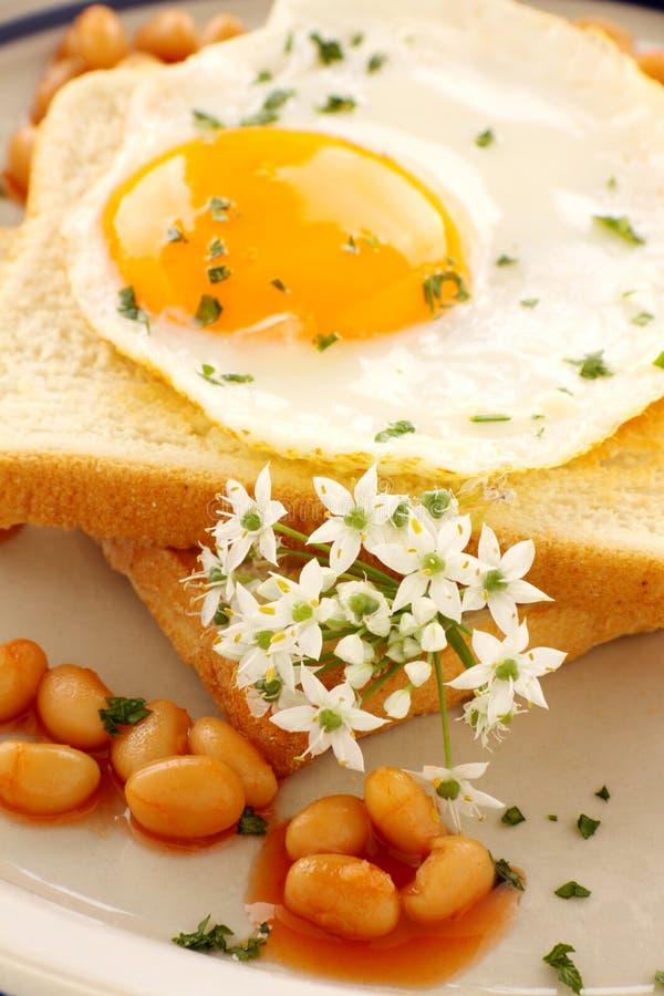 Cebolinhos do ovo e de alho foto de stock