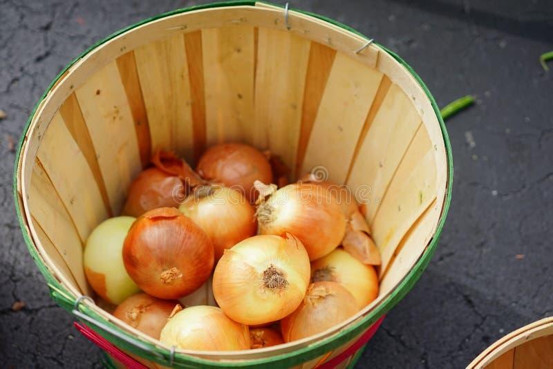 Cebolla amarilla en la cesta imagen de archivo