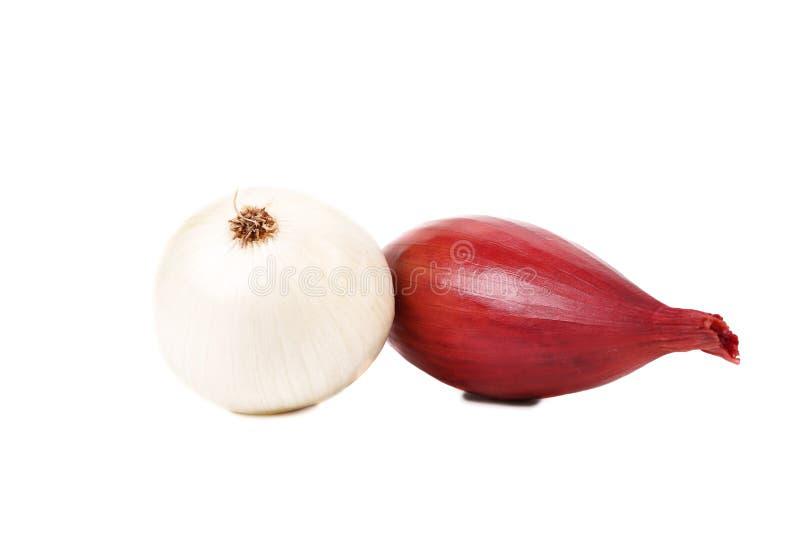 Cebolla blanca y cebolla roja. imagen de archivo libre de regalías
