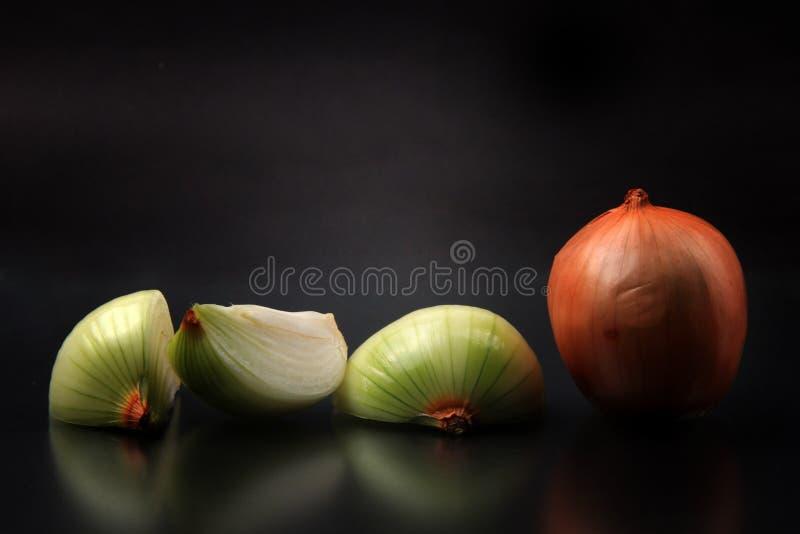 Cebolla con un fondo negro foto de archivo
