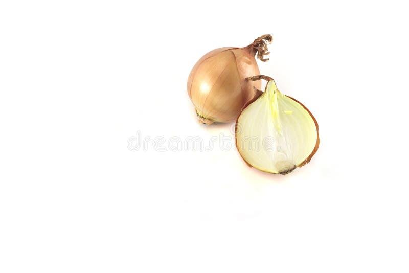 Cebolla cortada madura aislada en el fondo blanco fotos de archivo