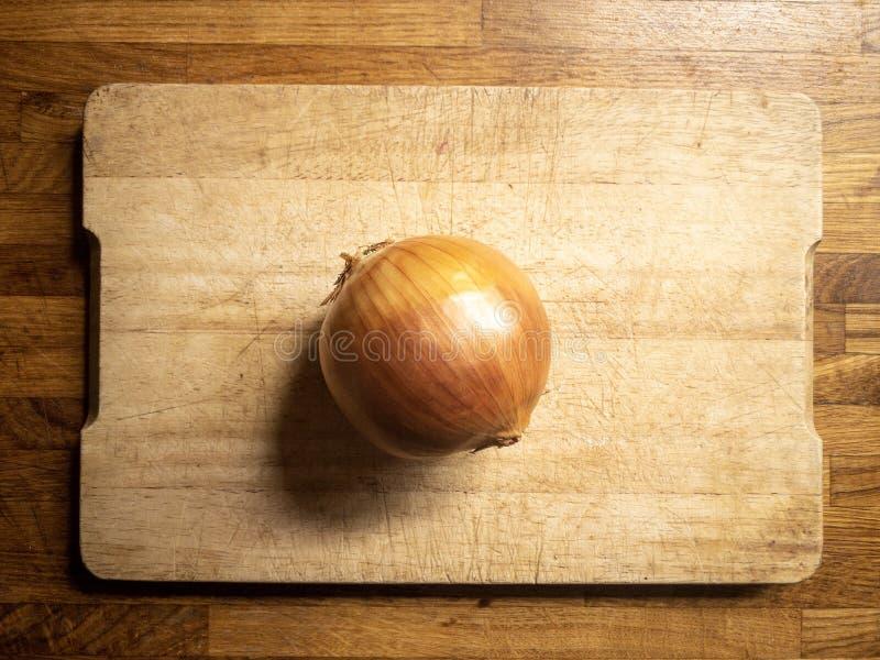 Cebolla de oro lista para ser cocinado imágenes de archivo libres de regalías