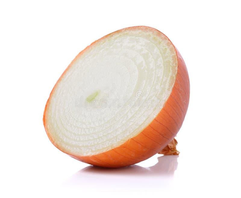 Cebolla fresca en el fondo blanco foto de archivo