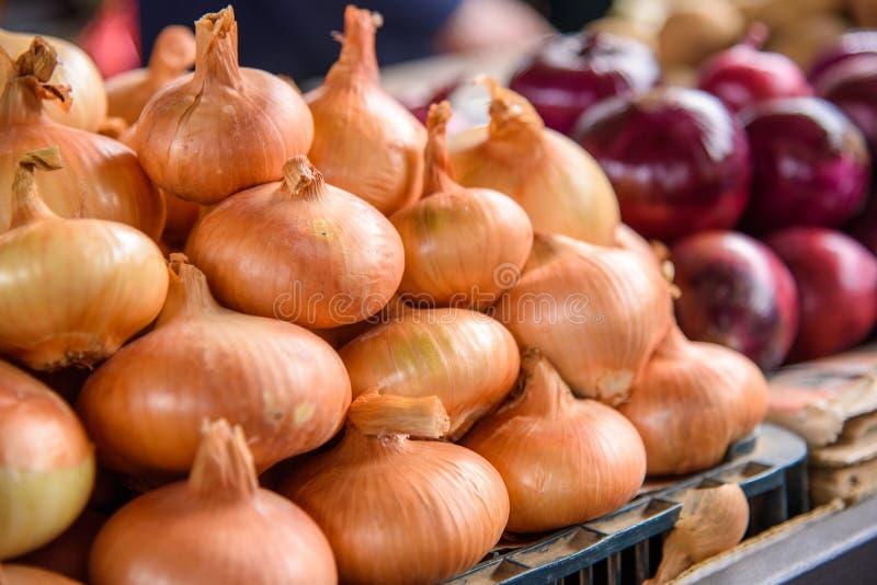 Cebolla fresca en el mercado imágenes de archivo libres de regalías