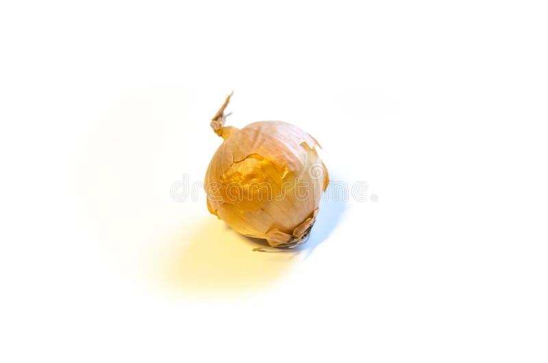Cebolla madura en un fondo blanco imagenes de archivo