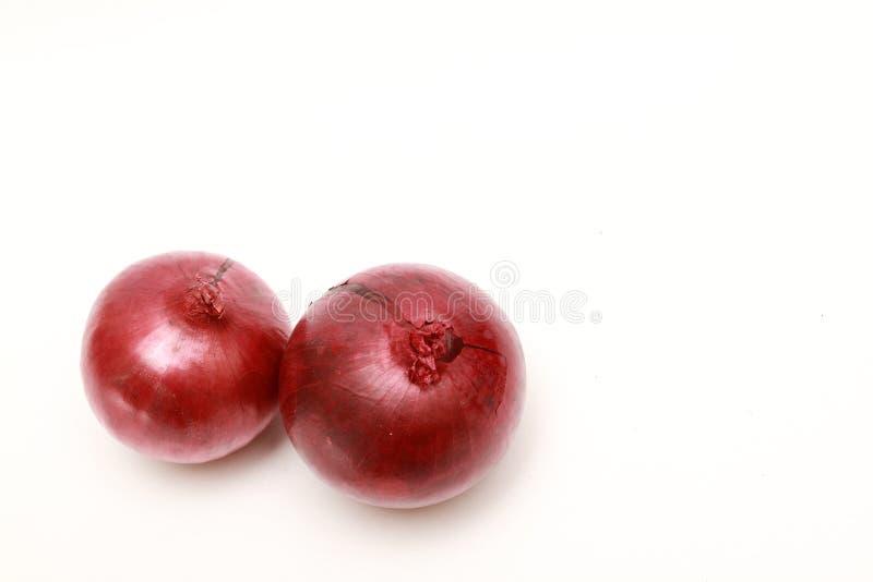 Cebolla roja dos en el fondo blanco imagenes de archivo