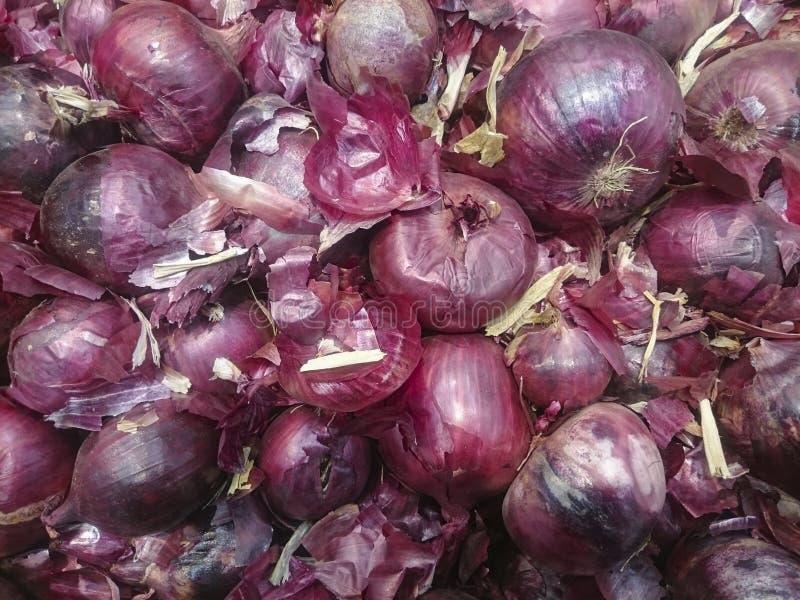 Cebolla roja en caja en la tienda de alimentación del ultramarinos Compre ingredientes naturales para la consumición sana y sabro fotos de archivo