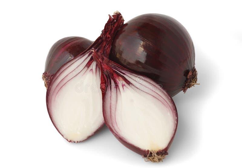 Cebolla roja encima en el fondo blanco imagenes de archivo