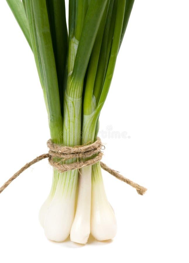 Cebolla verde (alimento y concepto de la salud) con el espacio f fotos de archivo libres de regalías