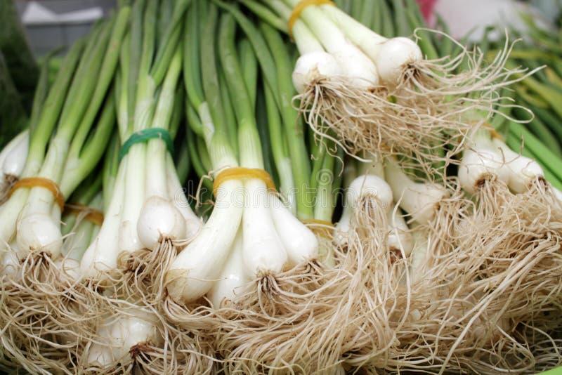 Cebolla verde con las cebolletas Cebollas frescas de la ensalada Verduras e hierbas org?nicas en un mercado del granjero scallion foto de archivo
