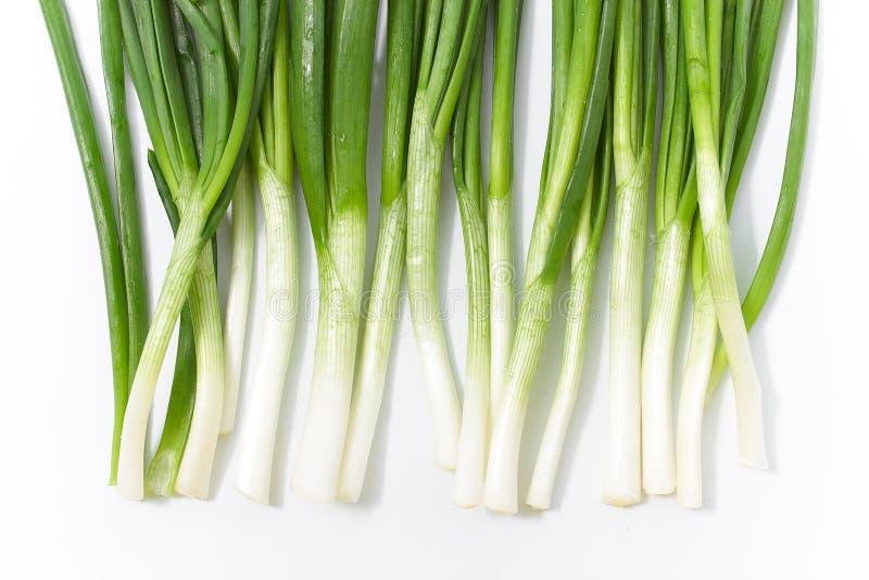 Cebolla verde en un fondo blanco E foto de archivo libre de regalías