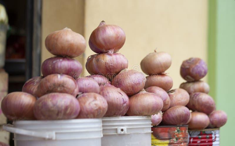 Cebollas frescas del mercado de Ghana en venta fotos de archivo