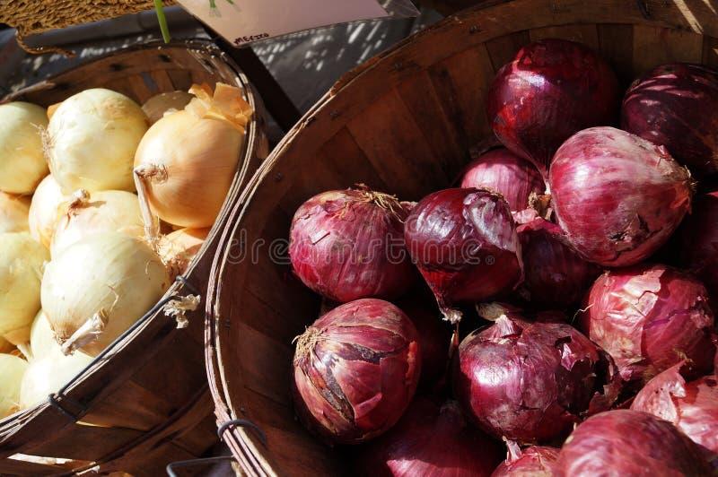 Cebollas frescas en el mercado del granjero imagen de archivo