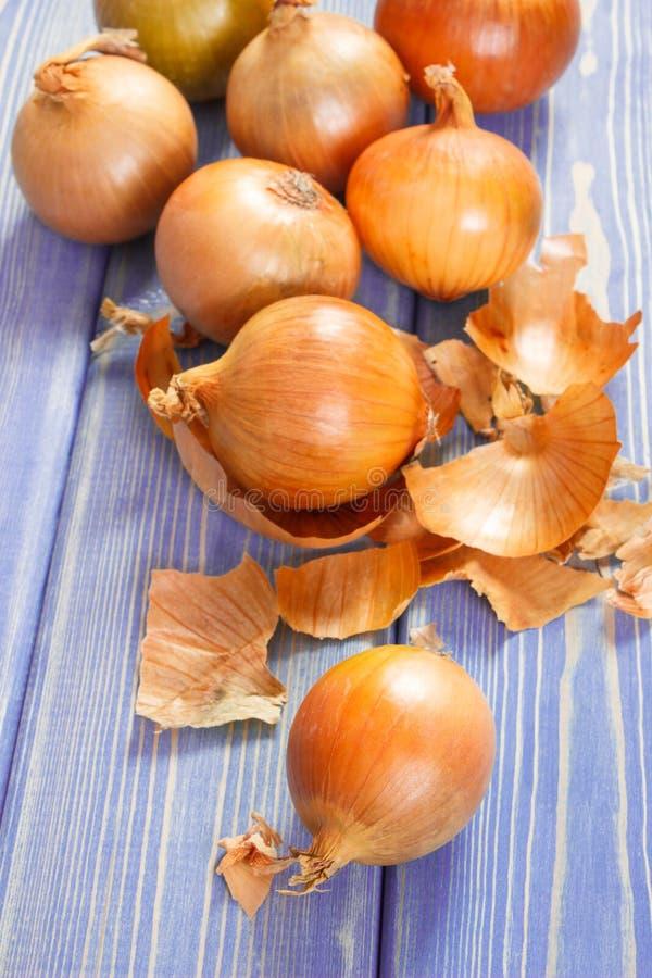 Cebollas frescas peladas que mienten en los tableros púrpuras, concepto sano de la nutrición fotografía de archivo libre de regalías