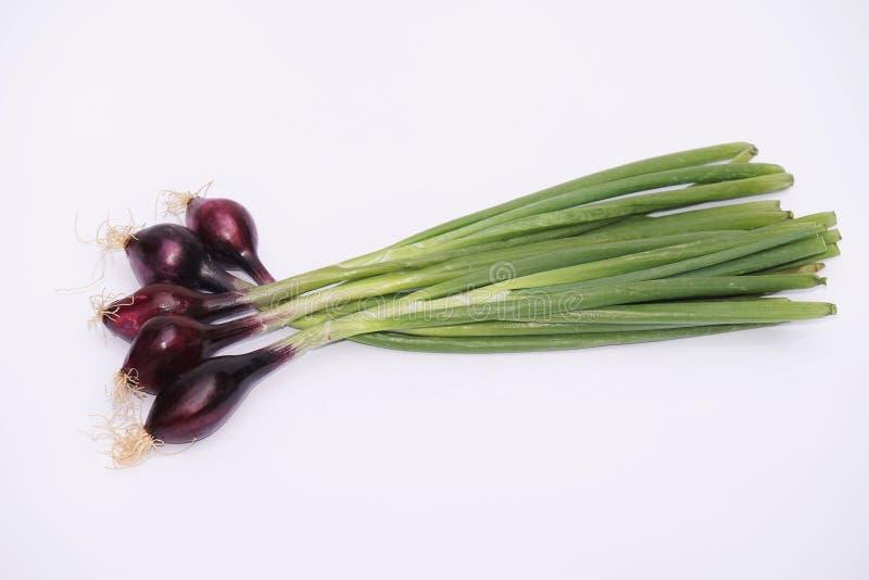 Cebollas orgánicas frescas imagen de archivo