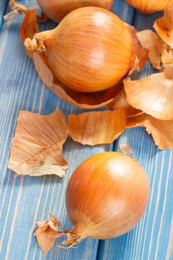 Cebollas peladas que mienten en los tableros azules, concepto sano de la nutrición imagen de archivo libre de regalías