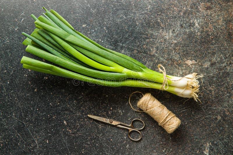 Cebollas verdes de la primavera fotos de archivo libres de regalías
