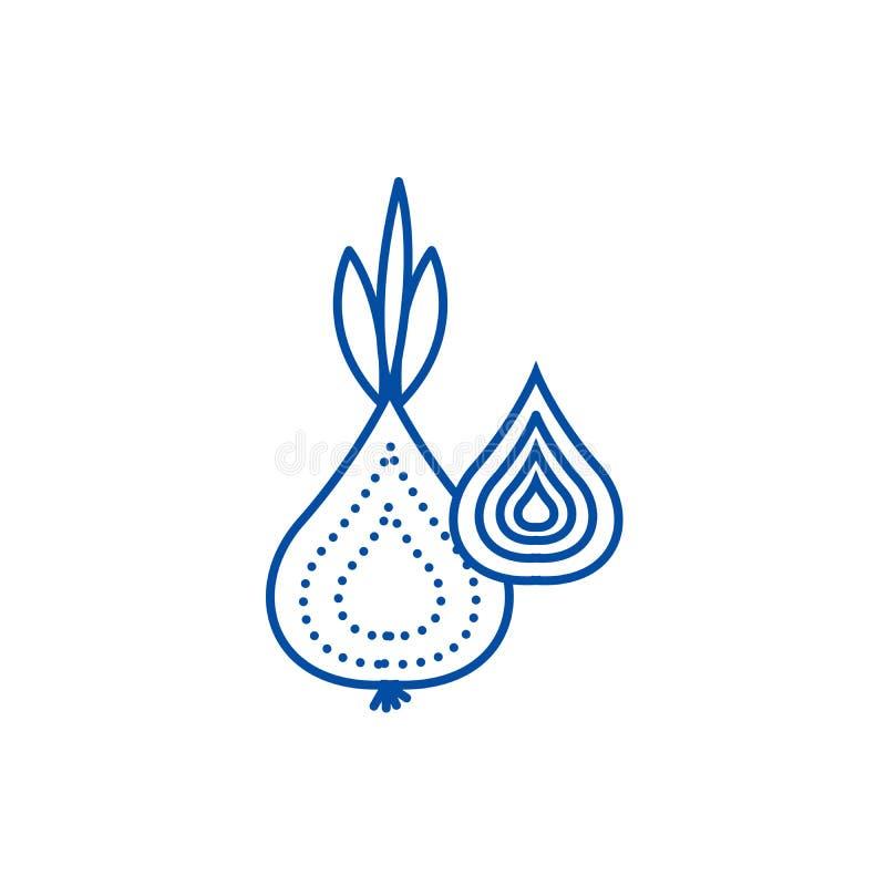 Cebuli ikony kreskowy pojęcie Cebulkowy płaski wektorowy symbol, znak, kontur ilustracja ilustracja wektor