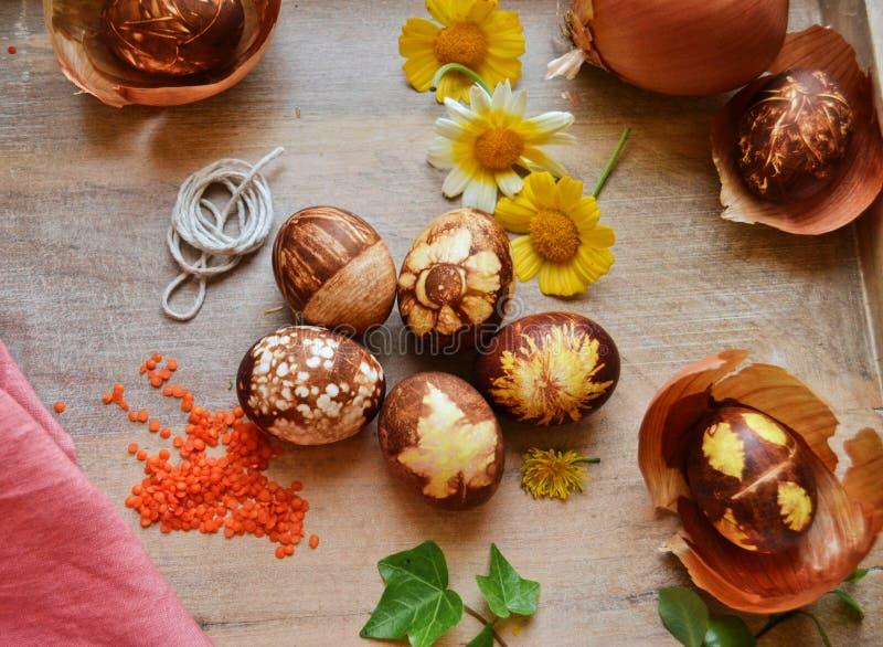 Cebulkowej skóry farbujący jajka w koszu zdjęcia stock