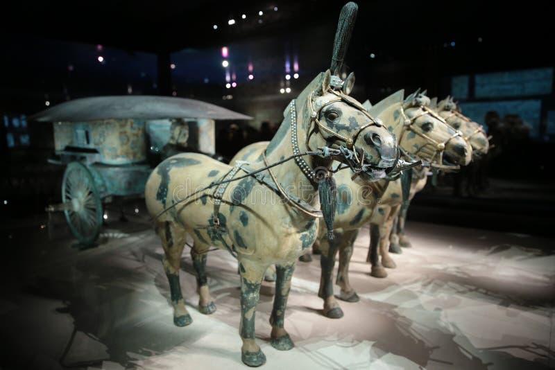 Musée de guerriers et de chevaux de terre cuite des Chine photos libres de droits