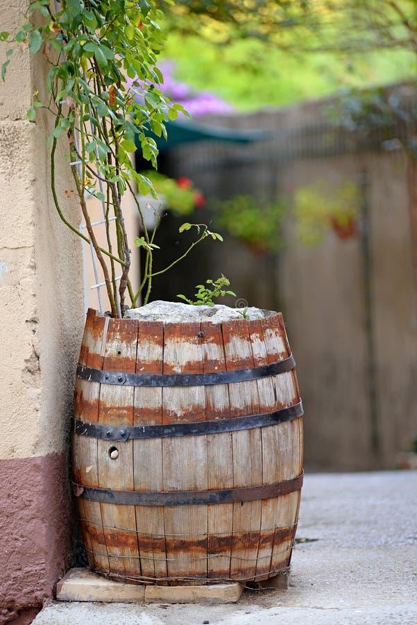 Cedar barrel in a narrow street. royalty free stock photography